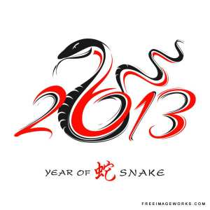2013 is the Year of the Snake